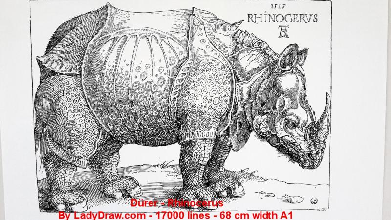 [RENDER] Durer – Rhinocerus – 17 000 lines – A1